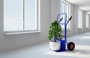 Μεταφέρετε μόνοι σας, τις προηγούμενες ημέρες, ορισμένα πράγματα που θα σας ξεπλοκάρουν την ημέρα της μετακόμισης, π.χ. φυτά.