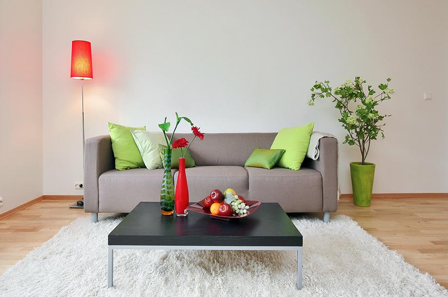 Ενισχύστε το χρώμα του χώρου σας με φυτά. Είναι ο πιο οικολογικός και οικονομικός τρόπος.