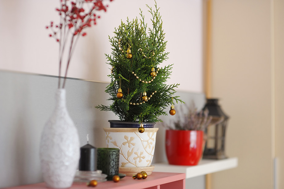 thehomeissue_holidayhome03