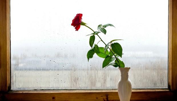 Προστατέψτε το Σπίτι σας Από τη Βροχή