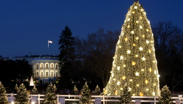 Τα 10 πιο Εντυπωσιακά Χριστουγεννιάτικα Δέντρα Από όλο τον Κόσμο!