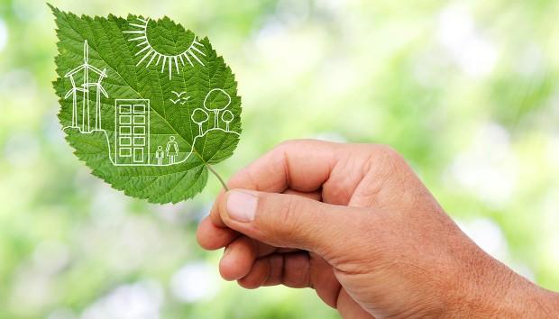 Οικολογία στο σπίτι: 10 αλλαγές που μπορείτε να κάνετε