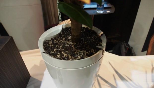 Δείτε την «Έξυπνη» Γλάστρα που Ποτίζει Μόνη της τα Φυτά σας