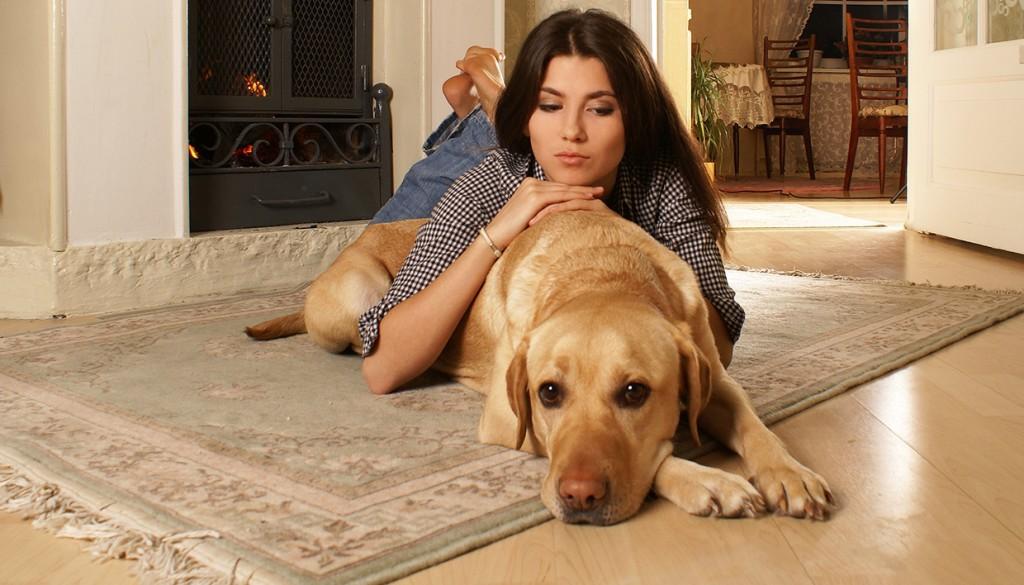 b575b4db88fb Πως μπορώ να απαλλαγώ από τις τρίχες του σκύλου »spirossoulis.com ...