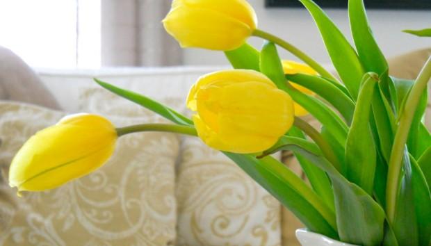 7 Επαγγελματικά Κόλπα για να Διατηρήσετε τα Λουλούδια σας Περισσότερο Καιρό Φρέσκα