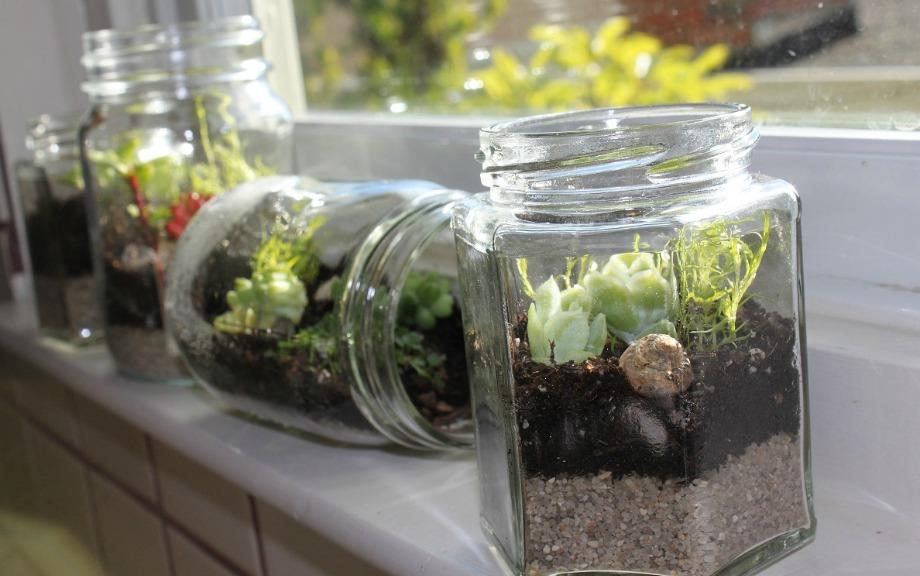 Αν θέλετε να δώσετε χρώμα και ζωή στον χώρο, φτιάξτε μίνι ενυδερία φυτών και βάλτε τα κοντά στα παράθυρα