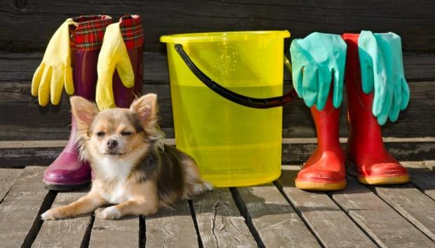 Βεράντα: Μυστικά για το Τέλειο Καθάρισμα της Μετά το Τέλος του Χειμώνα