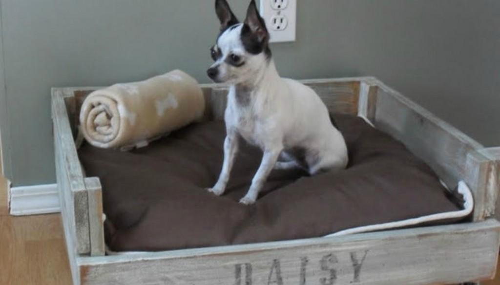 3fda916a8842 7 Diy τρόποι για να Φτιάξετε Κρεβατάκια Σκύλωνspirossoulis.com – the ...