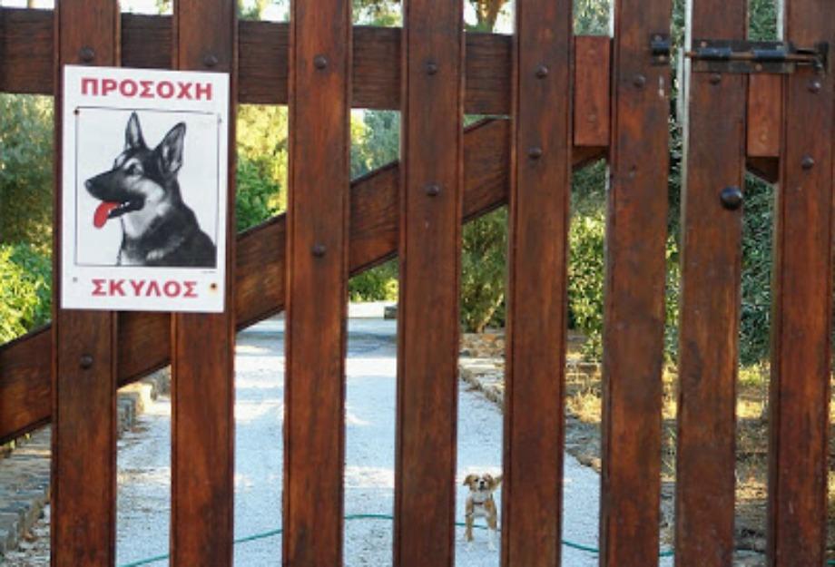 Βάλτε πινακίδα 'Προσοχή σκύλος' για να αποτρέψετε τους κλέφτες να εισέλθουν ακόμα και αν δεν έχετε σκύλο