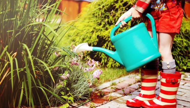 Αφήστε τα Φυτά σας να Ποτίζονται μόνα τους όσο Λείπετε για Διακοπές με ένα Πανεύκολο Κολπάκι