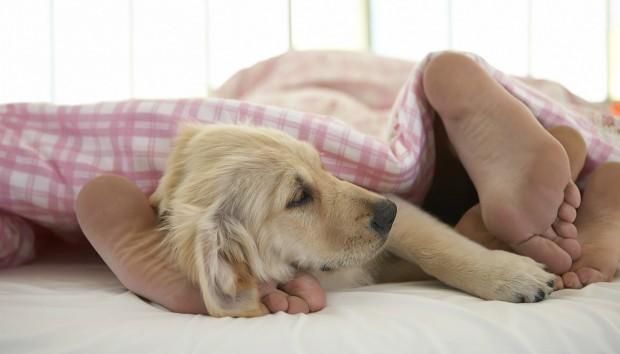 8 λόγοι για να αγαπήσετε τις πρωινές αγκαλιές