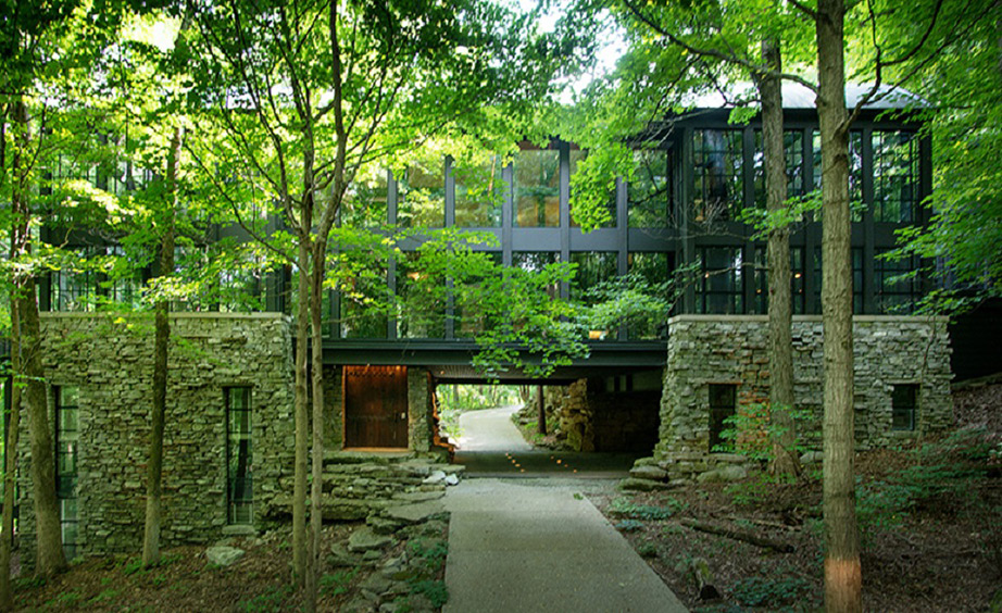 thehomeissue_treehouse008