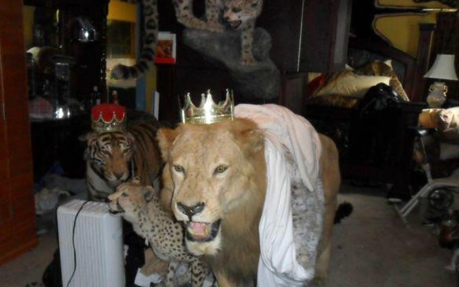 Είναι πολύ τρομακτικό να μένετε σε ένα σπίτι με ταριχευμένα ζώα.