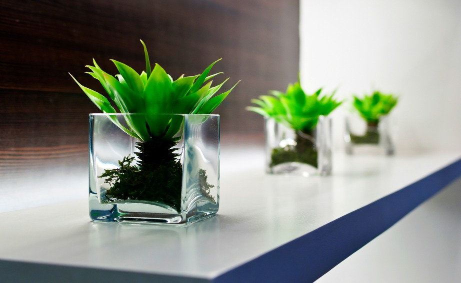 Μην ξεχνάτε να χρησιμοποιείτε λουλούδια και φυτά μέσα στο σπίτι σας καθώς βελτιώνουν πολύ την ψυχολογική μας κατάσταση.