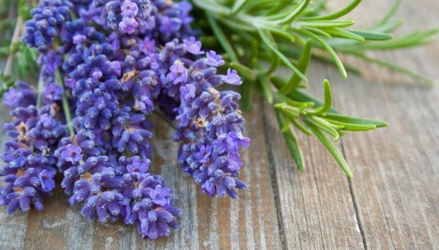 8 Μυρωδιές Που Σας Φτιάχνουν τη Διάθεση!