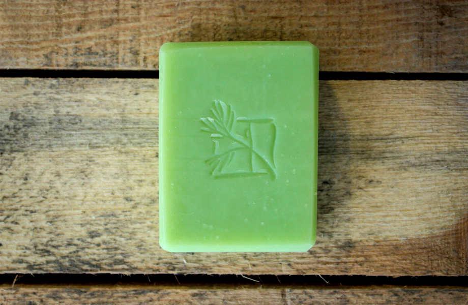 Πράσινο σαπούνι και... καθαρίσατε από τα ενοχλητικά ζωύφια!