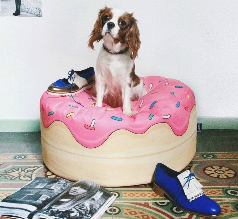 Κρεβατάκι σκύλου σε μορφή ντόνατ.