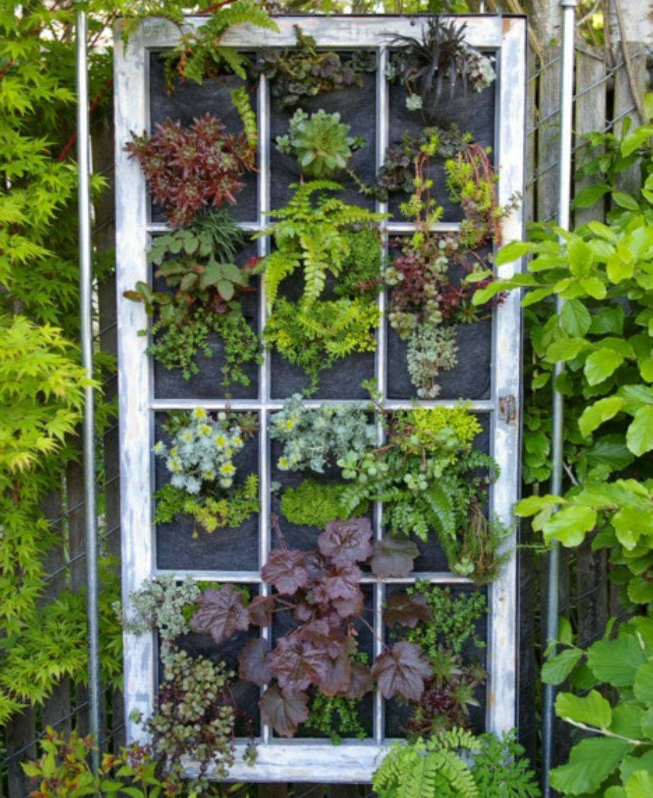 Ένα παλιό [παράθυρο μπορεί να είναι η τέλεια λύση για διακόσμηση βεράντας με φυτά ή για να κρύψετε εκείνη την ατέλεια που έχετε στη βεράντα σας.