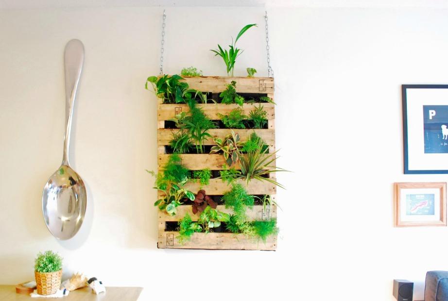 Αν έχετε κάποιο ξύλινο επιπλάκι με ράφια μπορείτε να το κρεμάστε στην κουζίνα και να καλλιεργήσετε εκεί φυτά που θα σας χρησιμεύσουν και στη μαγειρική.