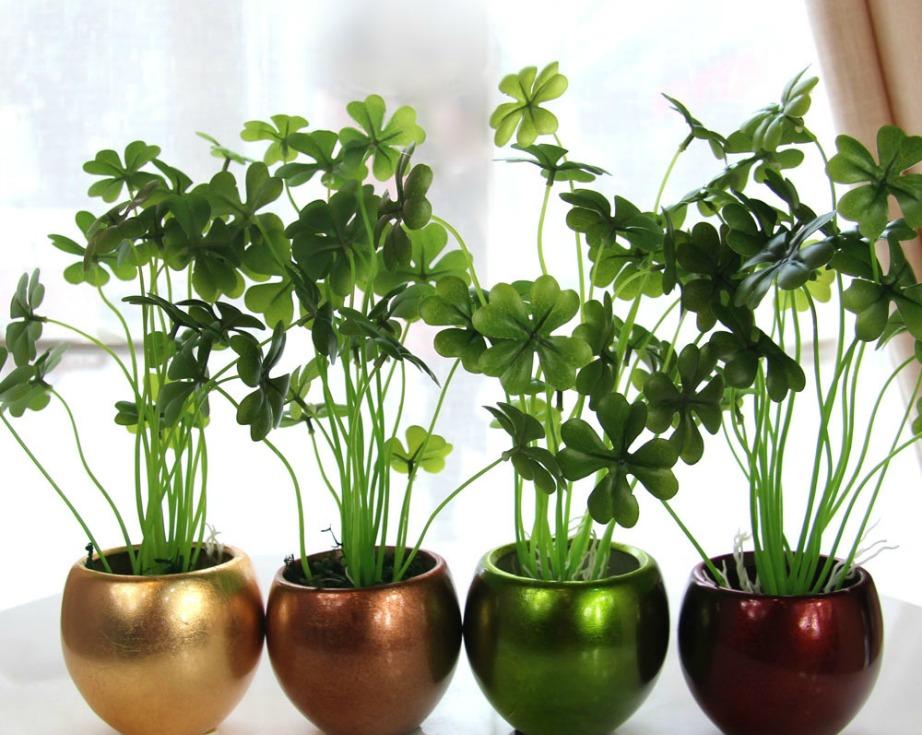 Για να αποκτήσει το σπίτι πιο καλοκαιρινή διάθεση και ζωντάνια, φέρτε τη φύση στο εσωτερικό του σπιτιού προσθέτοντας γλάστρες με όμορφα φυτά και λουλούδια.