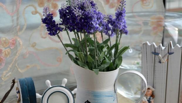 Ξένοιαστες Διακοπές: Αυτά Είναι τα Φυτά που Αντέχουν Μέρες Χωρίς Νερό