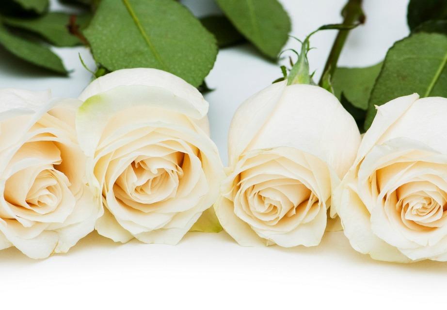 Το λευκό είναι το χρώμα της αγνότητας.