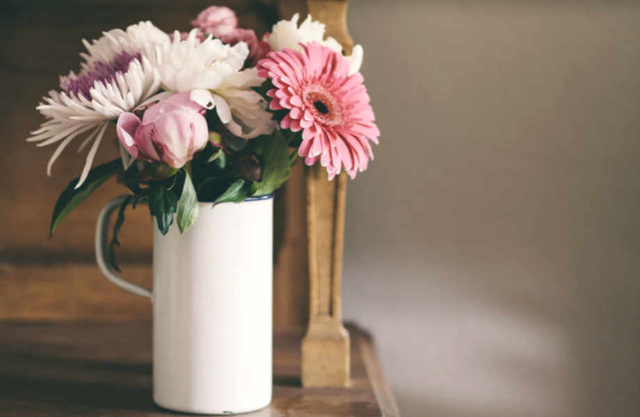 Playful gerbera is not only beautiful but also reduces air pollution of indoor spaces.