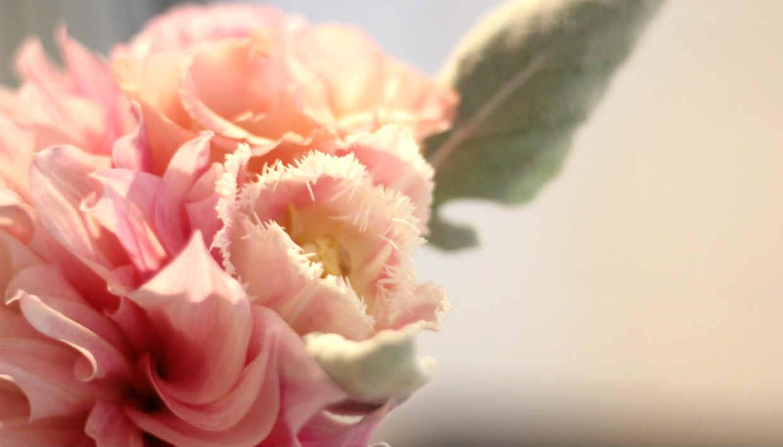 thehomeissue_summerflowers006
