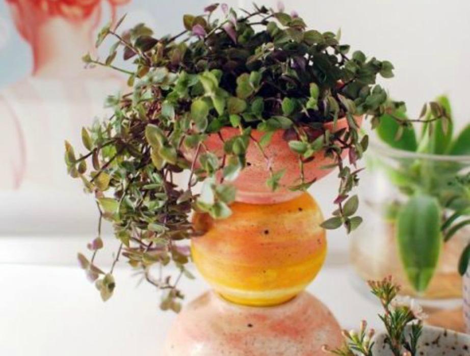 Με τρία μπολ, λίγη μπογιά και κάποιο όμορφο λουλουδι μπορείτε να φτιάξετε ένα όμορφο διακοσμητικό φυτό για το τραπέζι σας.