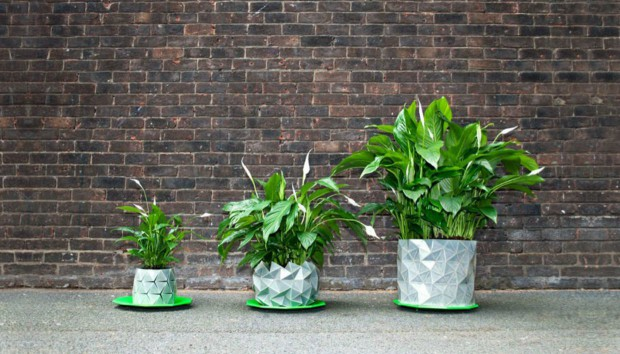 Δείτε την Απίστευτη Γλάστρα που Μεγαλώνει Μαζί με το Φυτό