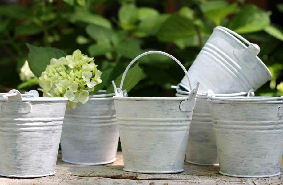 Δεν είστε φαν του vintage; Γεμίστε τα μεταλλικά δοχεία και κουβαδάκια με λουλούδια και ανανεώστε το χώρο σας άμεσα κι οικονομικά.