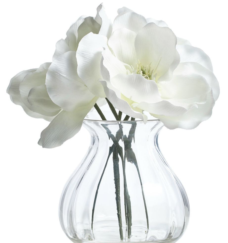 Η μανόλια είναι ένα λουλούδι και με θεραπευτικές ιδιότητες.