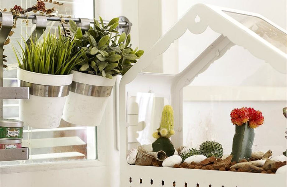Τα φυτά χαρίζουν το χρώμα και την φυσική κομψότητά τους στην κουζίνα της Éléonore.