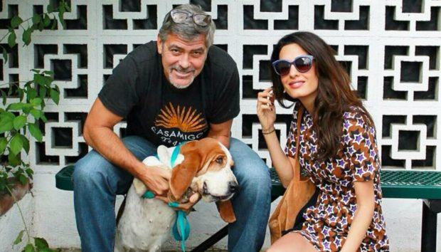 George Clooney και Amal Alamuddin: Αυτή είναι η Αγροτική Βίλα του πιο Στιλάτου Ζευγαριού του Hollywood