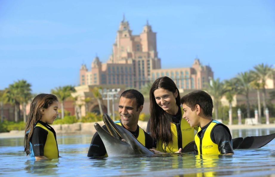 Η εμπειρία του να κολυμπάτε μαζί με δελφίνια είναι μαγευτική
