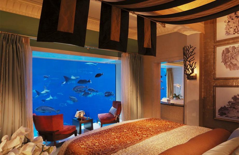 Τα μισά δωμάτια διαθέτουν θέα προς το υπέροχο ενυδρείο του ξενοδοχείου