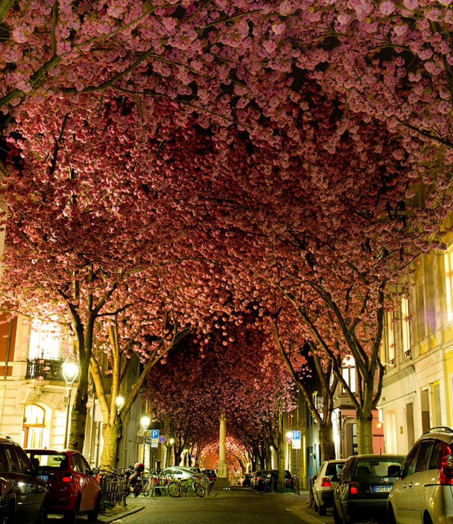 Bonn, Γερμανία