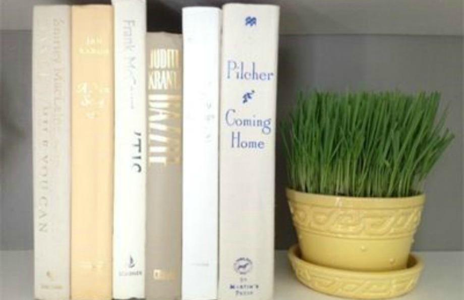 Διακοσμήστε τη βιβλιοθήκη σας με γλαστράκια ή άλλα διακοσμητικά