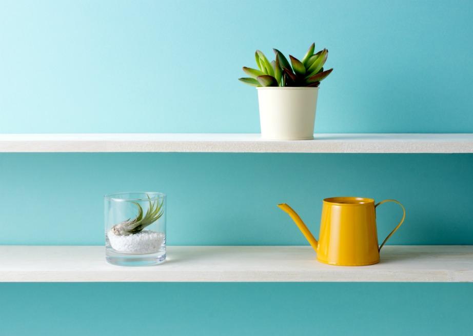 Βάψτε με τα κατάλληλα χρώματα για να αποφύγετε μούχλα και υγρασία στους τοίχους.