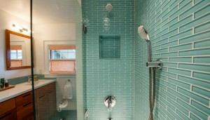thehomeissue_cleaningshower001