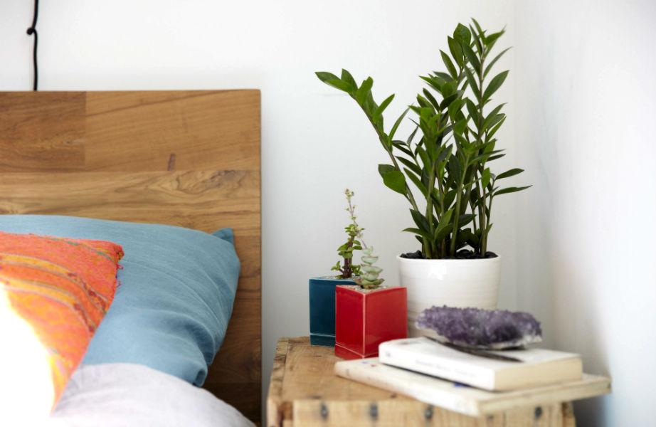 Φυτά στο κομοδίνο σας για ένα πιο υγιεινό υπνοδωμάτιο!