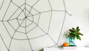 thehomeissue_spiders001