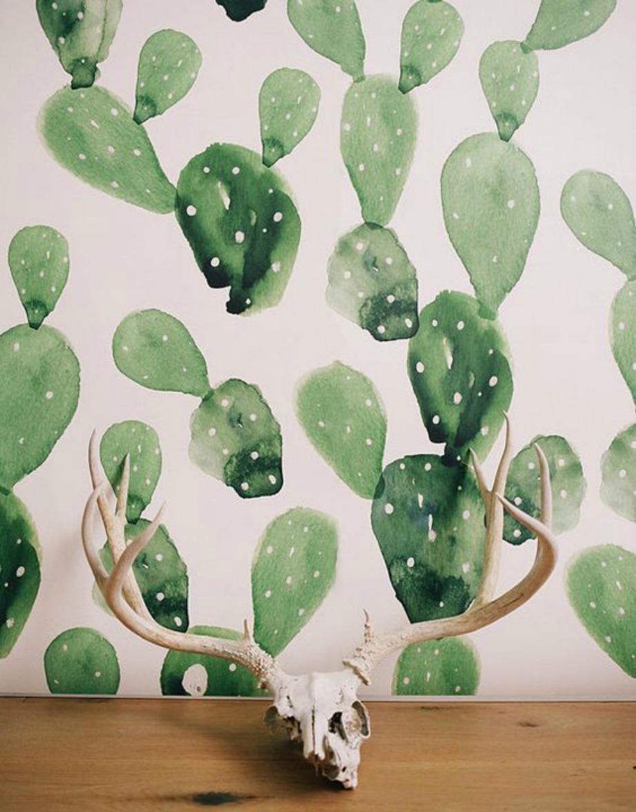 Η ταπετσαρία με τα φύλλα κάκτου είναι πολύ εντυπωσιακή και ταιριάζει σε χολ ή σε μικρούς τοίχους.