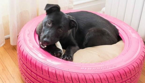Φτιάξτε ένα Όμορφο Κρεβάτι Σκύλου από Παλιό Λάστιχο Αυτοκινήτου (VIDEO)
