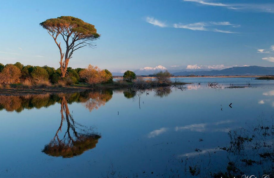 Το δάσος της Στροφυλιάς χωρίζει τη λίμνη του Πρόκοπου από το Ιόνιο πέλαγος.
