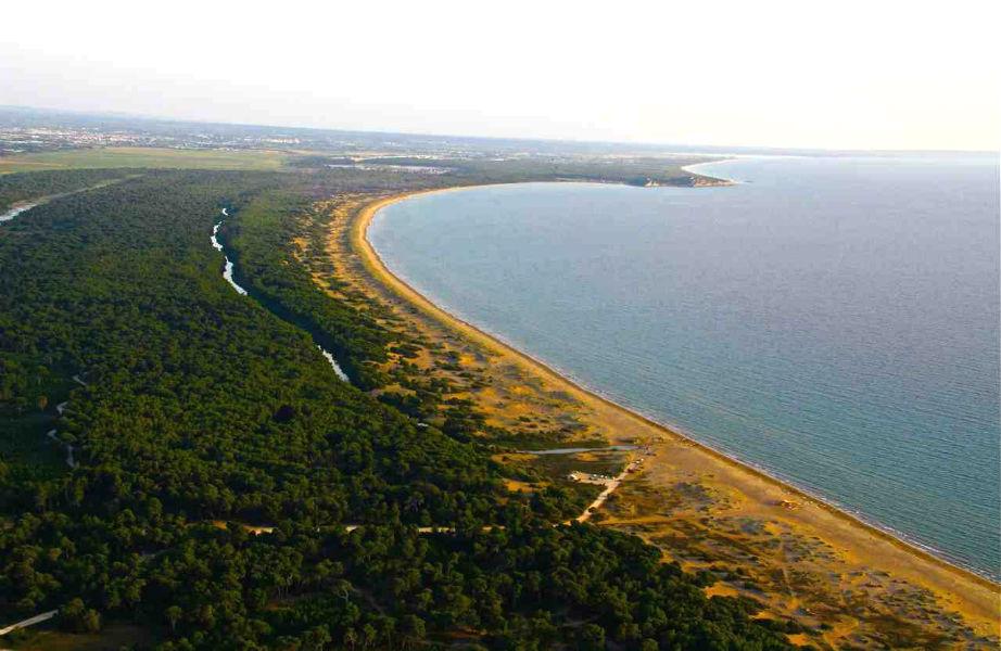 Η τεράστια παραλία της Καλόγριας αποτελεί τον καταληκτικό προορισμό στην περιοχή της Στροφυλίας.