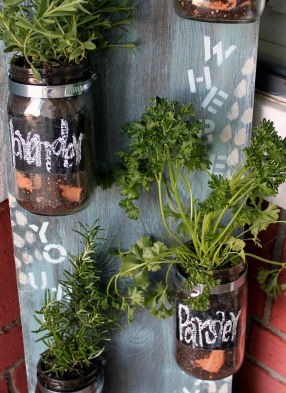 Καλλιεργήστε τα βότανά σας μέσα σε μικρά και μεγάλα βαζάκια.
