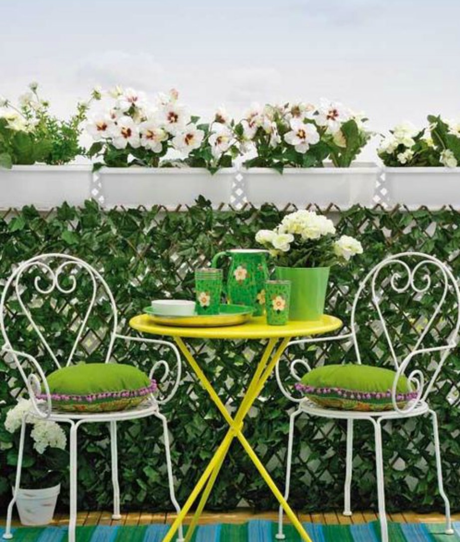 Τα αναρριχιτικά φυτά θα καλύψουν τα κάγκελα του μπαλκονιού και θα δημιουργήσουν την αίσθηση ενός πριβέ μπαλκονιού.