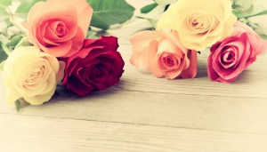thehomeissue_rose