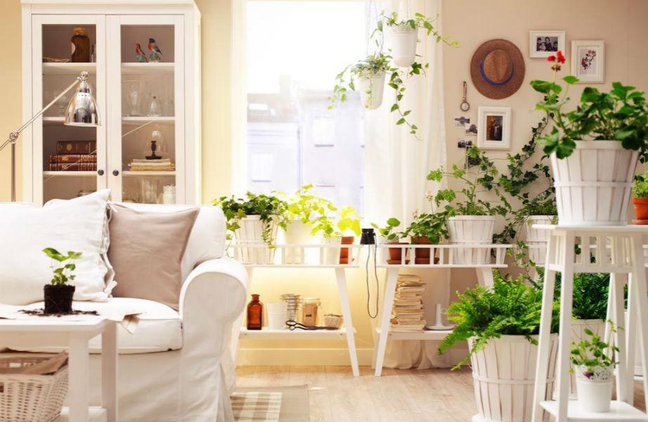 Φέρτε φρέσκο και παιχνιδιάρικο χαρακτήρα στο σπίτι σας με λουλούδια.